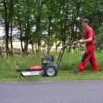 vari f580 max man mowing gras