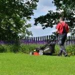 vari mower cutting grass